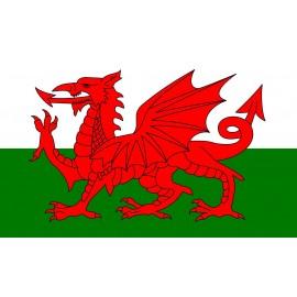 Fanion - Pays de Galles - en coton