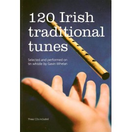 120 Irish traditional tunes - Gavin WHELAN