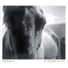 Capercaillie ‎– At The Heart Of It All